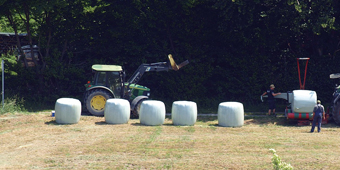 8 Silage